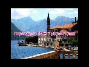Как иммигрировать в черногорию из россии на пмж