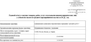 Отчет по смп 223 фз инструкция