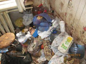 Антисанитария в квартире куда обращаться