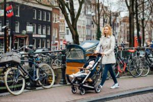 Как эмигрировать в нидерланды из россии