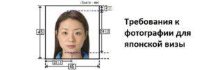Виза япония требования к фото 2020 электронный вариант