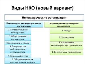 Примеры нко в россии