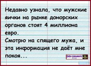 Рынок донорских органов в россии яички