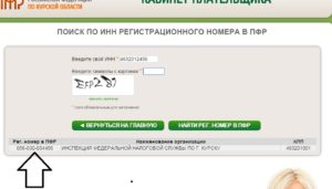 Узнать регистрационный номер фомс