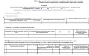 Акт внутренней экспертизы по 44 фз бланк образец