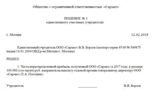 Образец решения учредителя о премировании директора