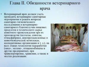 Должностная инструкция ветеринарного санитара ветеринарной станции