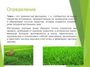 Определение газона в пдд