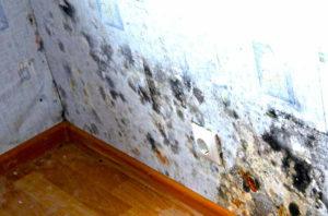 Промерзает стена в квартире что делать куда обращаться